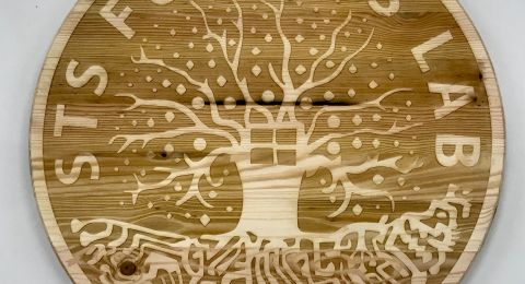 A Wood Burnout of STS Futures Lab logo