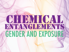 """The title """"Chemical Entanglements: Gender and Exposure"""" against a pink background that depicts images of test tubes and molecules."""