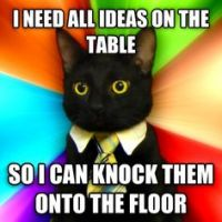 business meme says I need all ideas on the table so I can knock them onto the floor