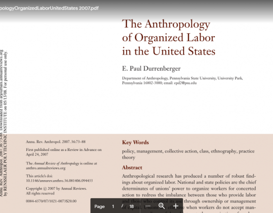 The Anthropology of Organized Labour in the United States