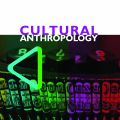 Cultural Anthropology Journal cover, multicolor design with old type writer keys featured in the center.