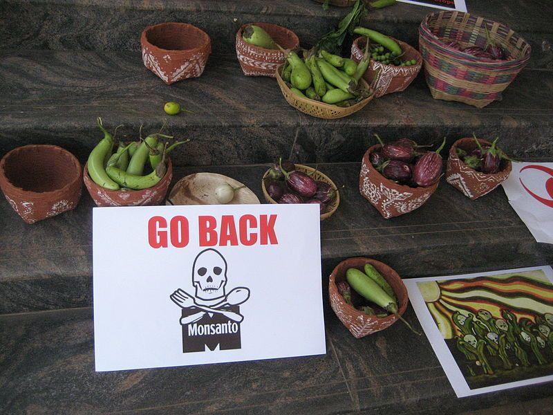 Monsanto Go Back!