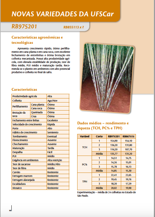 A page of a sugarcane varieties catalog showing the specifications of one particular variety. An image of the cane variety is accompanied by tables and charts.
